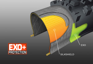 Carcasse Maxxis Exo + Protection