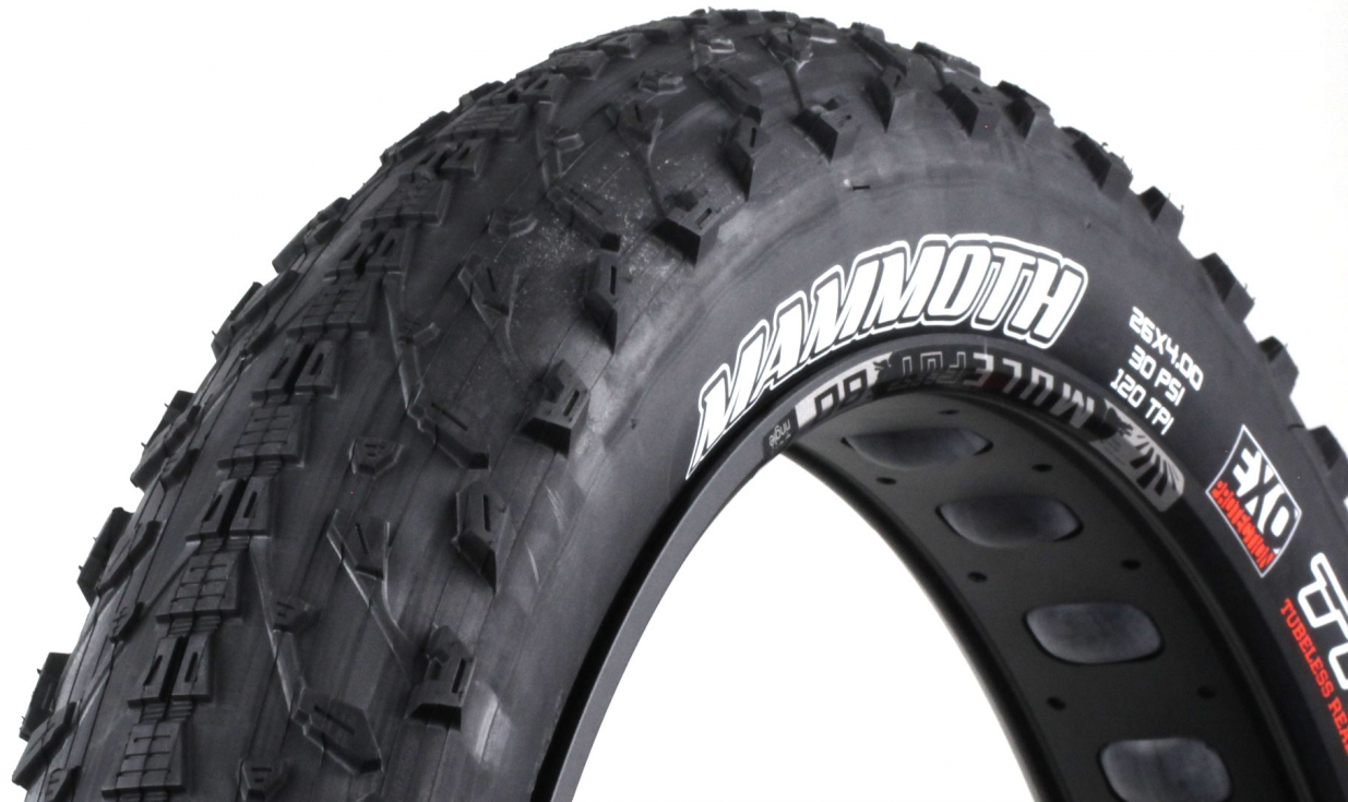 pneu fat bike maxxis mammoth exo protection dual 62a 60a tubeless ready pneus vtt pneus. Black Bedroom Furniture Sets. Home Design Ideas